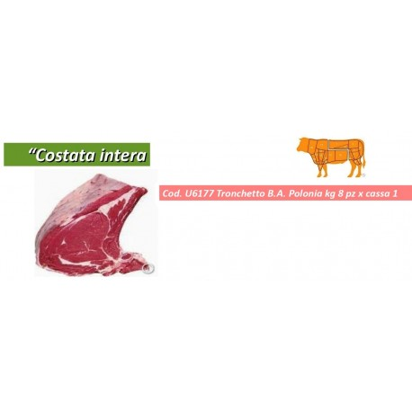 AIA COSTATA INTERA POLONIA KG 8 X 1 PZ