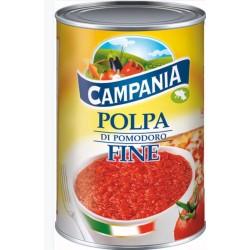 POLPA POMODORO CAMPANIA 500 GR X 24