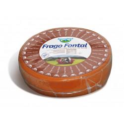 BAYERNLAND FRAGO FONTAL PLAST