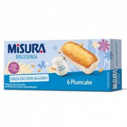 MISURA PLUMCAKE DOLCESENZA 190GR X12