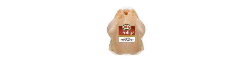 aia pollame
