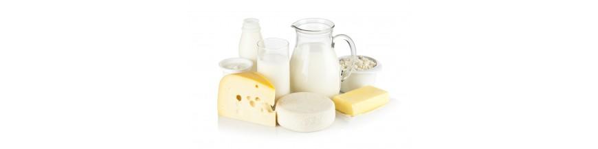 formaggi-latte-panna-derivati